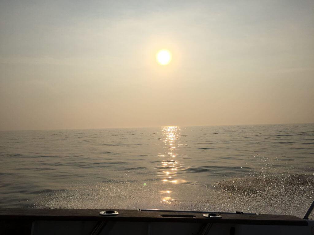 Sonne für Dorschangler