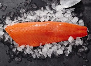 Coho Silberlachs Filet online bestellen auf dorsch-guide.de