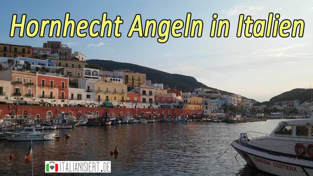 Hornhecht-angeln-in-Italien-am-Mittelmeer