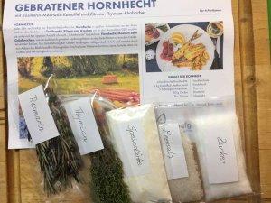 Erstklassisches Rezept für Hornhecht. [Download]