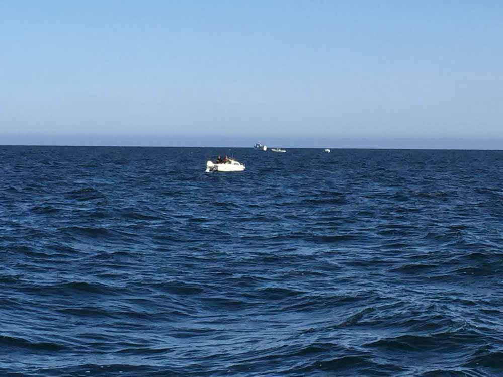 Zum Dorschangeln waren bereits andere Angelboote und Angelkutter auf der Ostsee vor Poel