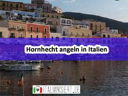 Bild_02_Hornhecht angeln in Italien_Hornhecht Italien Mittelmeer angeln_Dorsch-Guide.de