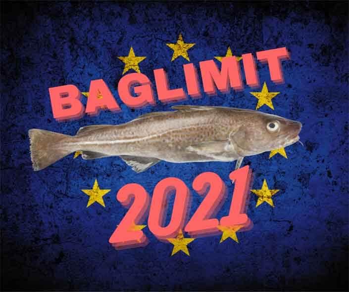 Beitragsbild_Baglimit-2021_Dorschangeln_Heringsangeln_Ostsee-Fangmengen